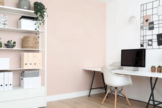 flexa verf pink nudity